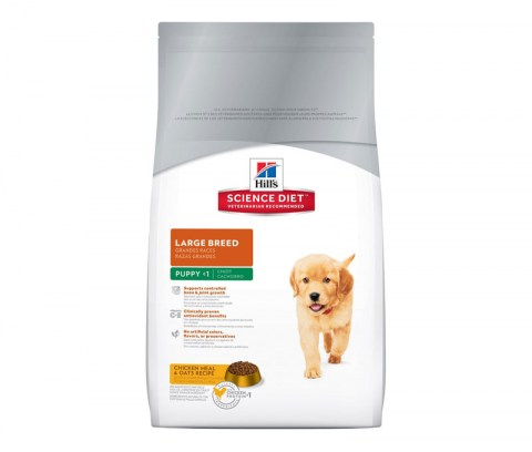 hills-science-diet-puppy-large-breed-food