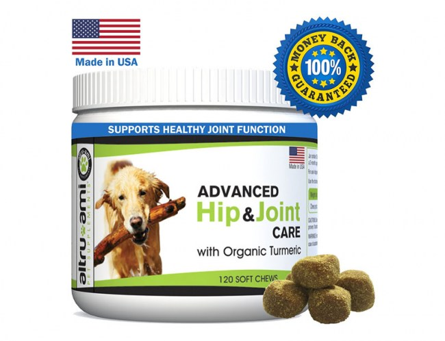 msm-glucosamine-treats-for-dogs-advanced-hip-and-joint-supplement-pain-relief